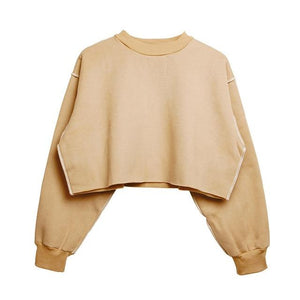 Autumn Winter Women Loose Velvet Fleece Plain Seam Detail Crop Hoodie Femaleuotelab-uotelab
