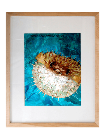 Pufferfish Art Print, Framed 16x20