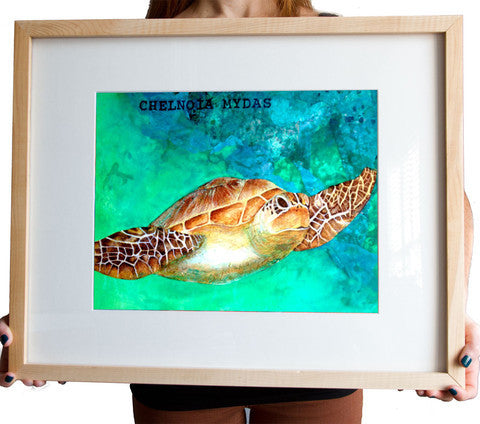 Chelnoia Mydas, Sea Turtle Art Print