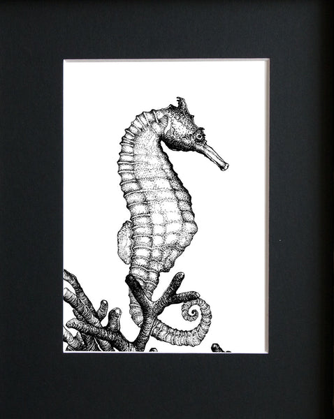 Seahorse Illustration, Mat Only