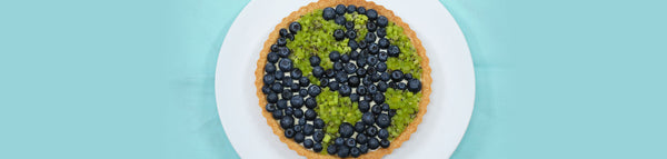Earth Day Fruit Tart
