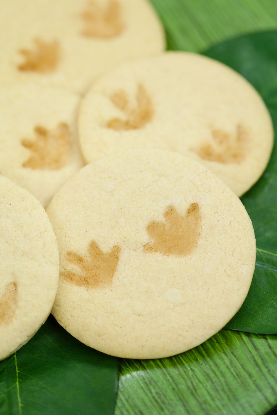Dino Footprint Fossil Cookies