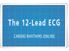 Cardiology Basics: The 12-Lead ECG