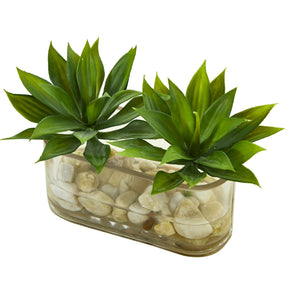 "6.5"" Mini Agave Succulent Artificial Arrangement in Glass Vase"