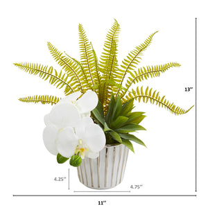 "13"" Phalaenopsis Orchid, Agave And Fern Artificial Arrangement (Set Of 2)"