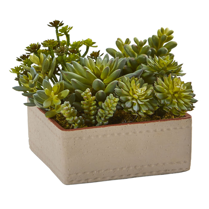 "7"" Mixed Succulent Artificial Plant with Decorative Planter"