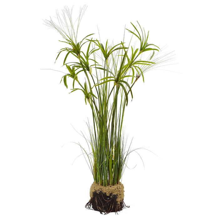 Papyrus Plant with Faux Soil