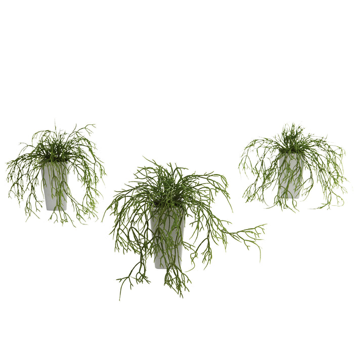 Wild Grass w/White Vase (Set of 3)