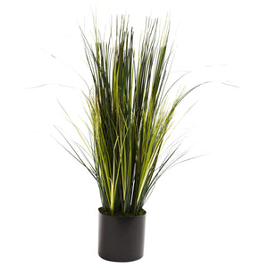3' Onion Grass Plant - Home Staging Warehouse