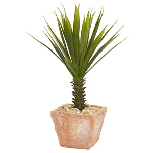 Spiky Agave Artificial Plant in Terracotta Planter