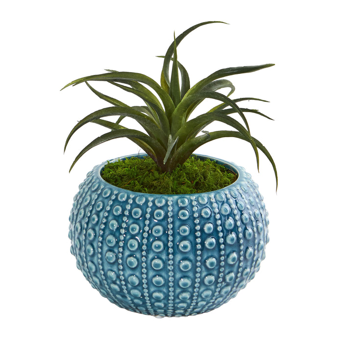 Air Plant Artificial Succulent In Blue Vase (Set Of 2)