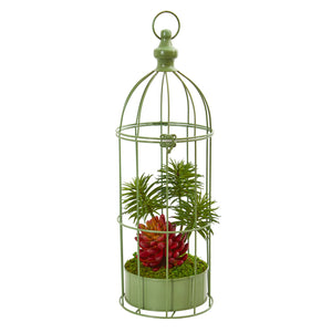 "20"" Succulent Artificial Plant In Decorative Cage"