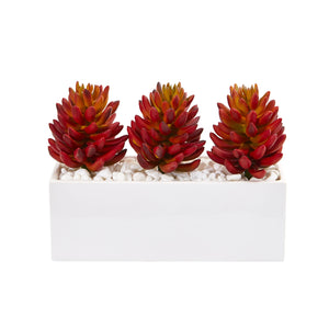 Triple Succulent Artificial Succulent In White Vase