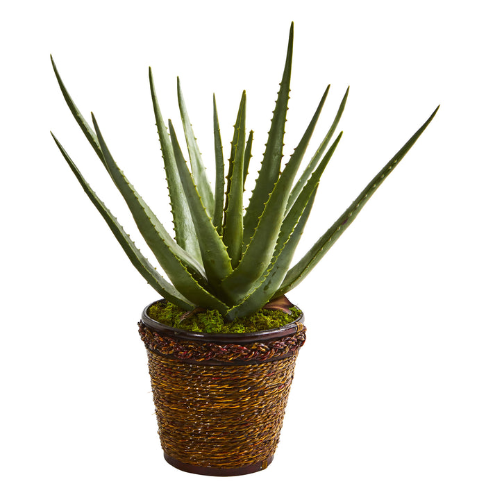 Aloe Artificial Plant In Basket