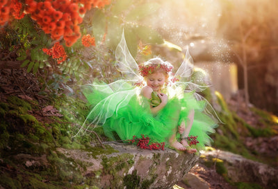 Fairy Wing Overlays: How to Change Colors in Photoshop