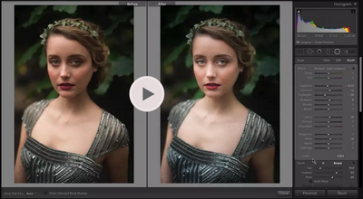 Mastering Brushes in Lightroom