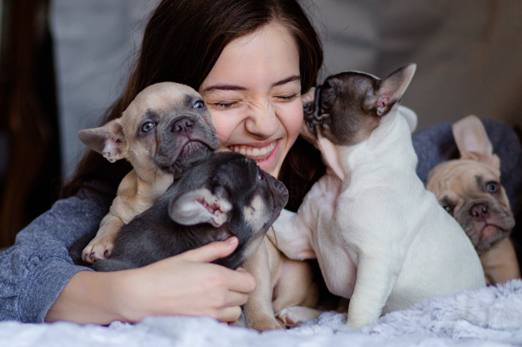 Girl and her puppies