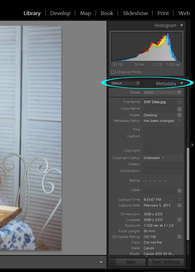 EXIF Data: What It is and Why You Need It – Pretty Presets