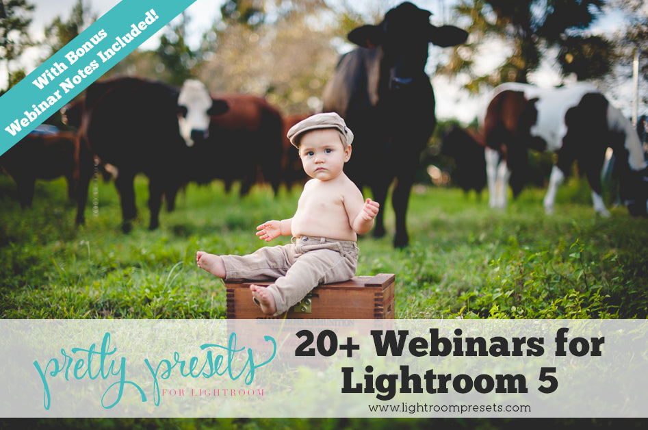20 Webinars for to Quickly Learn Lightroom | Pretty Presets Lightroom Tutorial