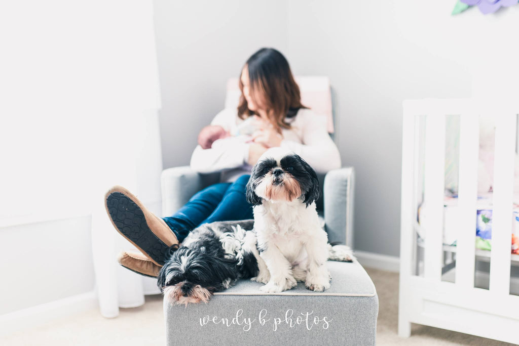 Mother rocking baby with two dogs sitting near her | Quiet Time Photo Challenge