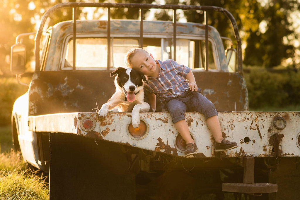 Photo of young boy and dog on the back of a truck