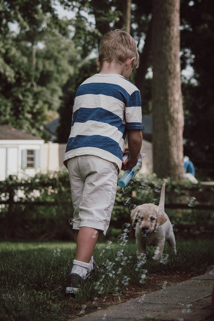 Photo of boy playing with puppy and bubbles
