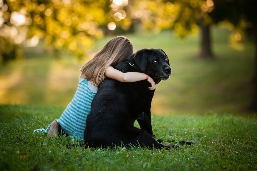 Photo of girl sitting and hugging her large black dog