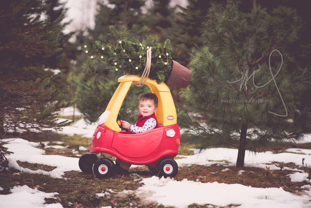 Photo of Toddler Carrying a Christmas Tree