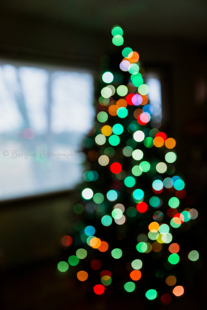 Christmas Tree Bokeh Lights Photo