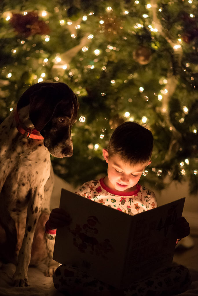 Photo of Boy and Dog Reading Book in Front of Christmas Tree