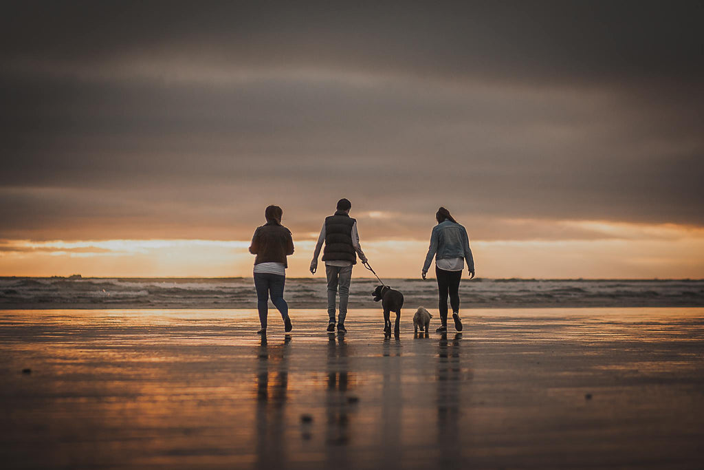 Image of family walking on beach at sunset