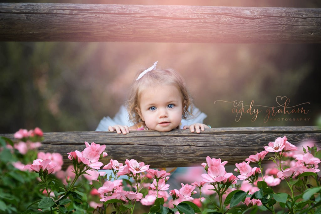 Girl posing behind fence and spring flowers