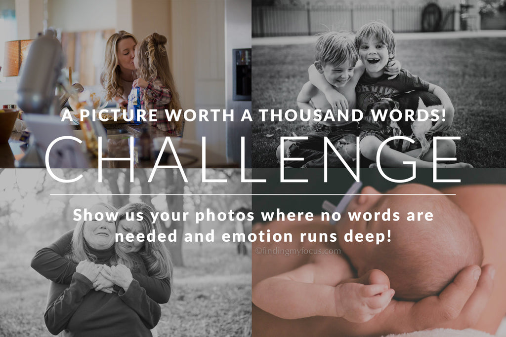 A Picture Worth A Thousand Words - Photography Challenge Winners Announced!