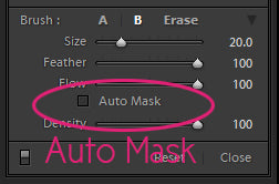 Lightroom Auto Mask Tool