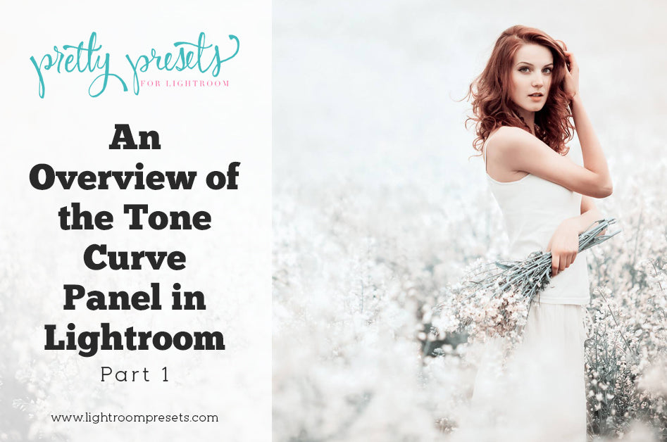 An Overview of the Tone Curve Panel in Lightroom Part 1