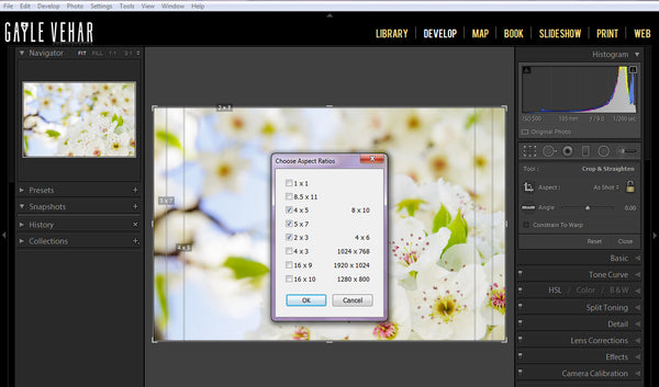 Lightroom Crop Guide Aspect Ratio
