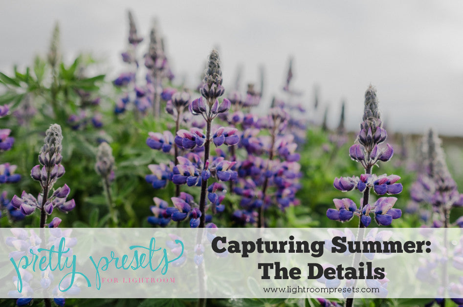 Capturing the Details of Summer | Pretty Presets for Lightroom Photography Tutorial