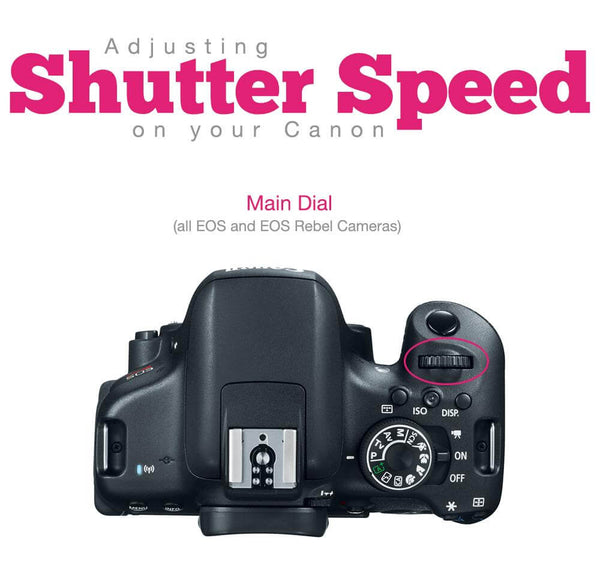 Shutter Speed for Beginners (7 Days to Mastering Manual Mode