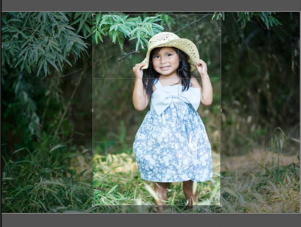 Changing crop tool orientation in Lightroom