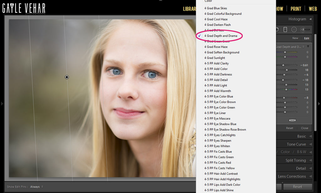 Perfect Portrait Brushes for Lightroom