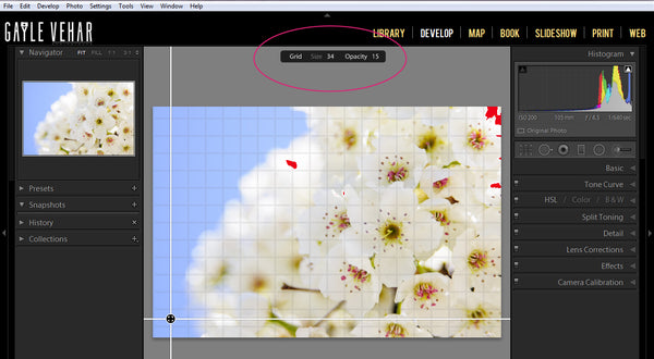 New Features of Lightroom 5