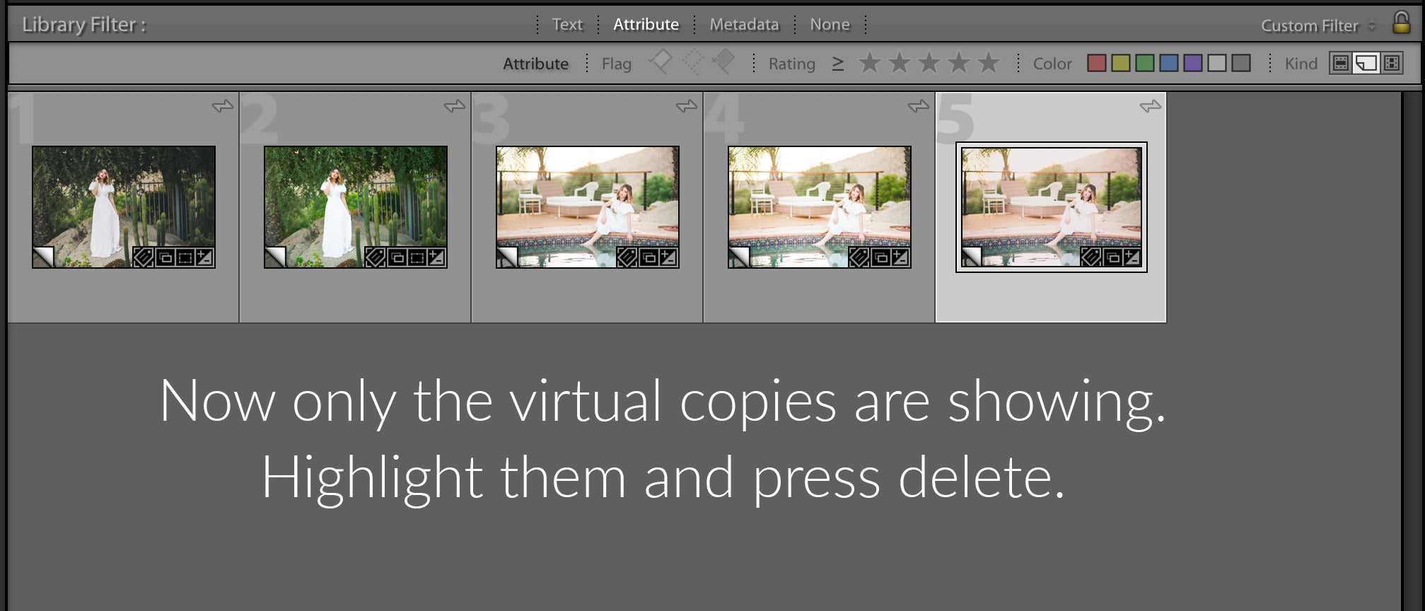 How to Delete Virtural Copies in Lightroom