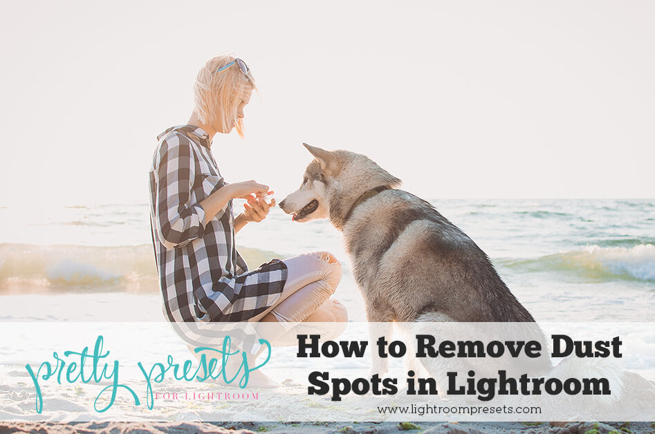 Lightroom Dust Spot Removal