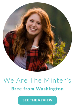 Review of Pretty Presets by We are the Minter's