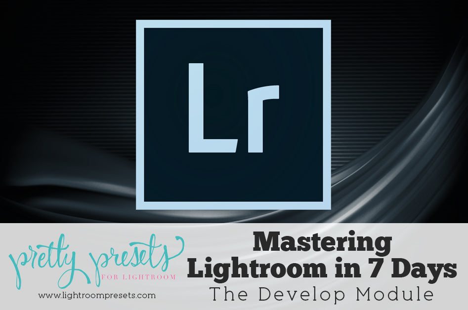 Master Lightroom: All About the Develop Module | Pretty Presets Lightroom Tutorial
