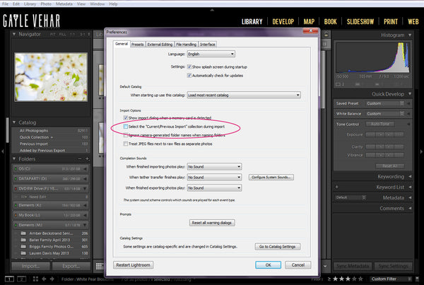 Lightroom Import Option