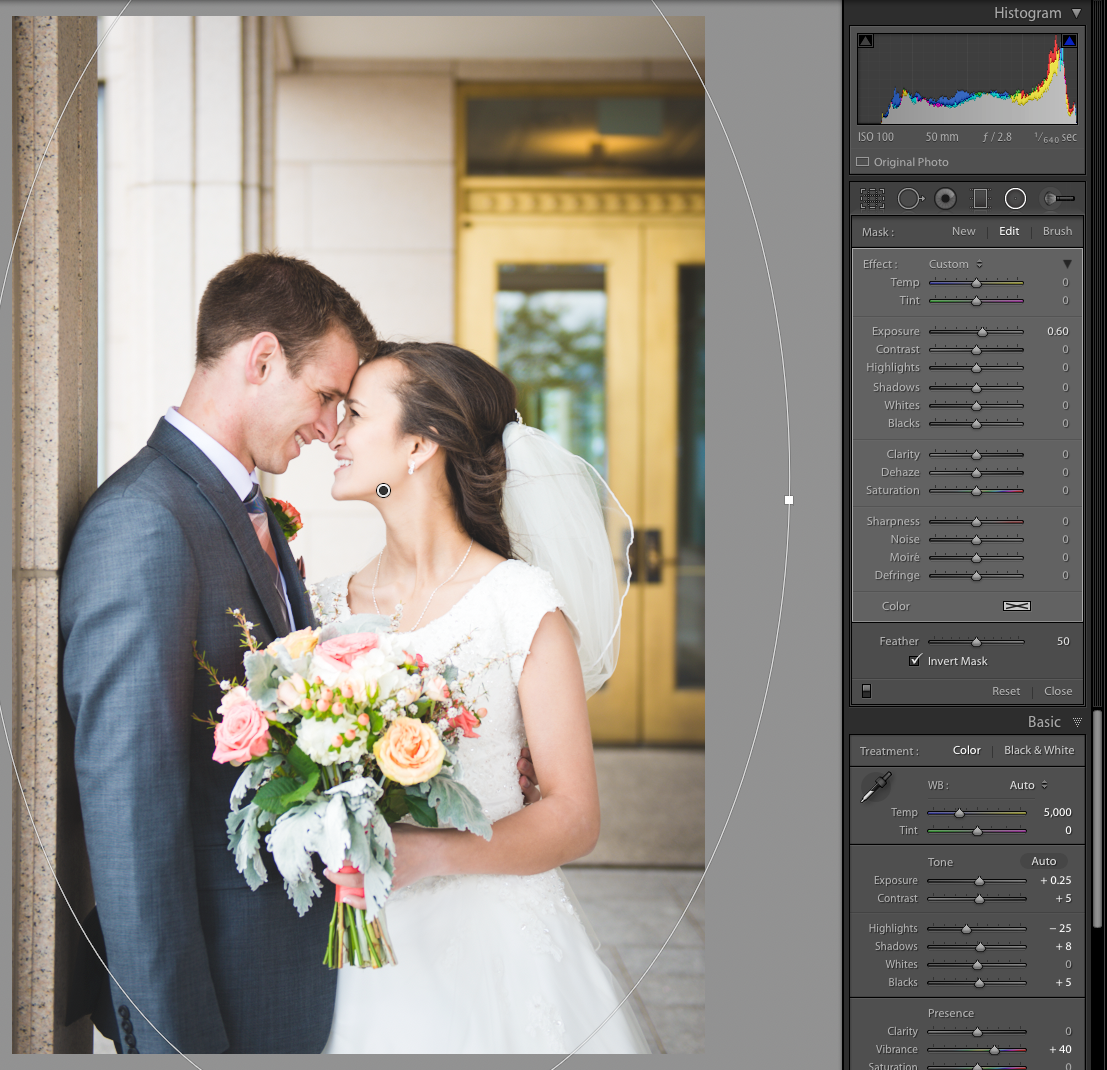 How to Use Pretty Presets for Lightroom's Post Presets