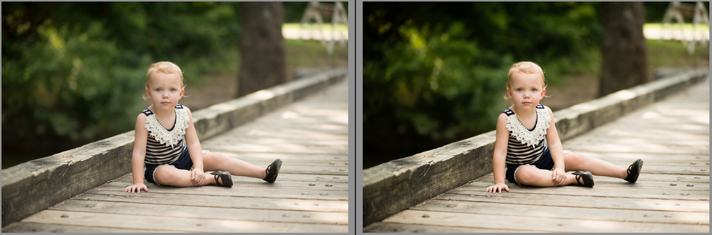 Lightroom Presets Changing the Tone Curve