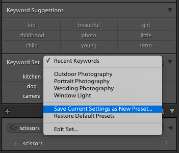 Keywords in Lightroom: Everything You Need to Know – Pretty