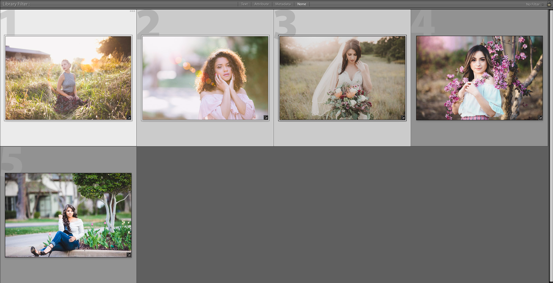 How to Select Multiple Photos in Lightroom